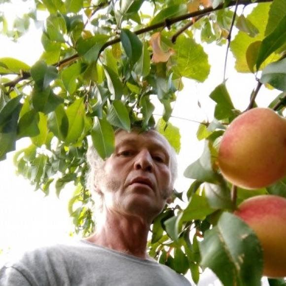 Profilbild von Cinnamoan